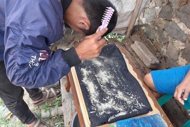 Photo of Viral Bisnis Jual Beli Ketombe dengan Harga Rp 65 Ribu/kg